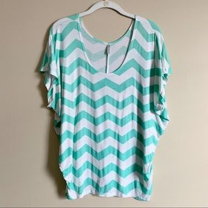 🌵2/$15 VANITY / teal and white chevron top / M
